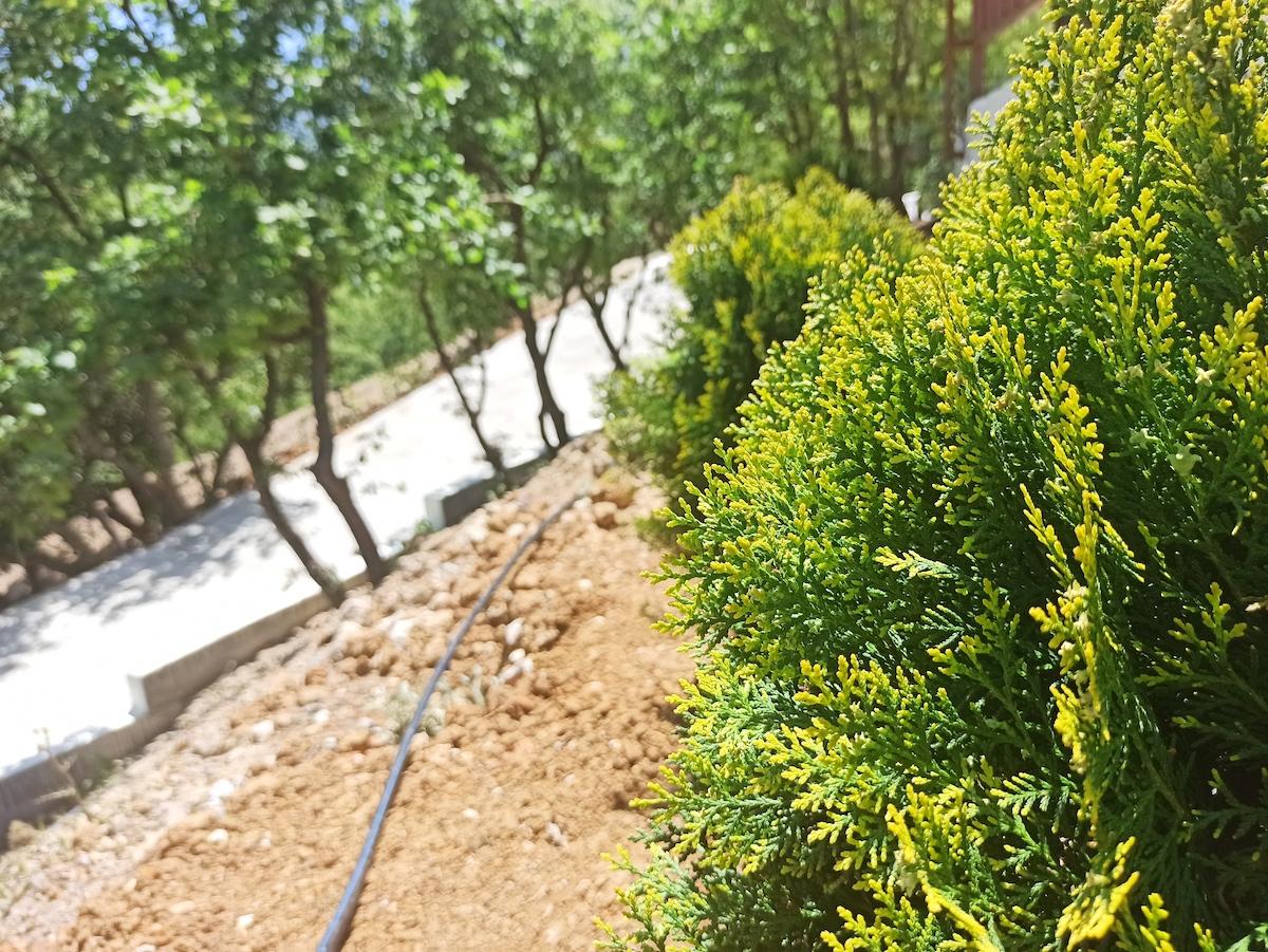 antonis-garden-villa-panorama-after-005