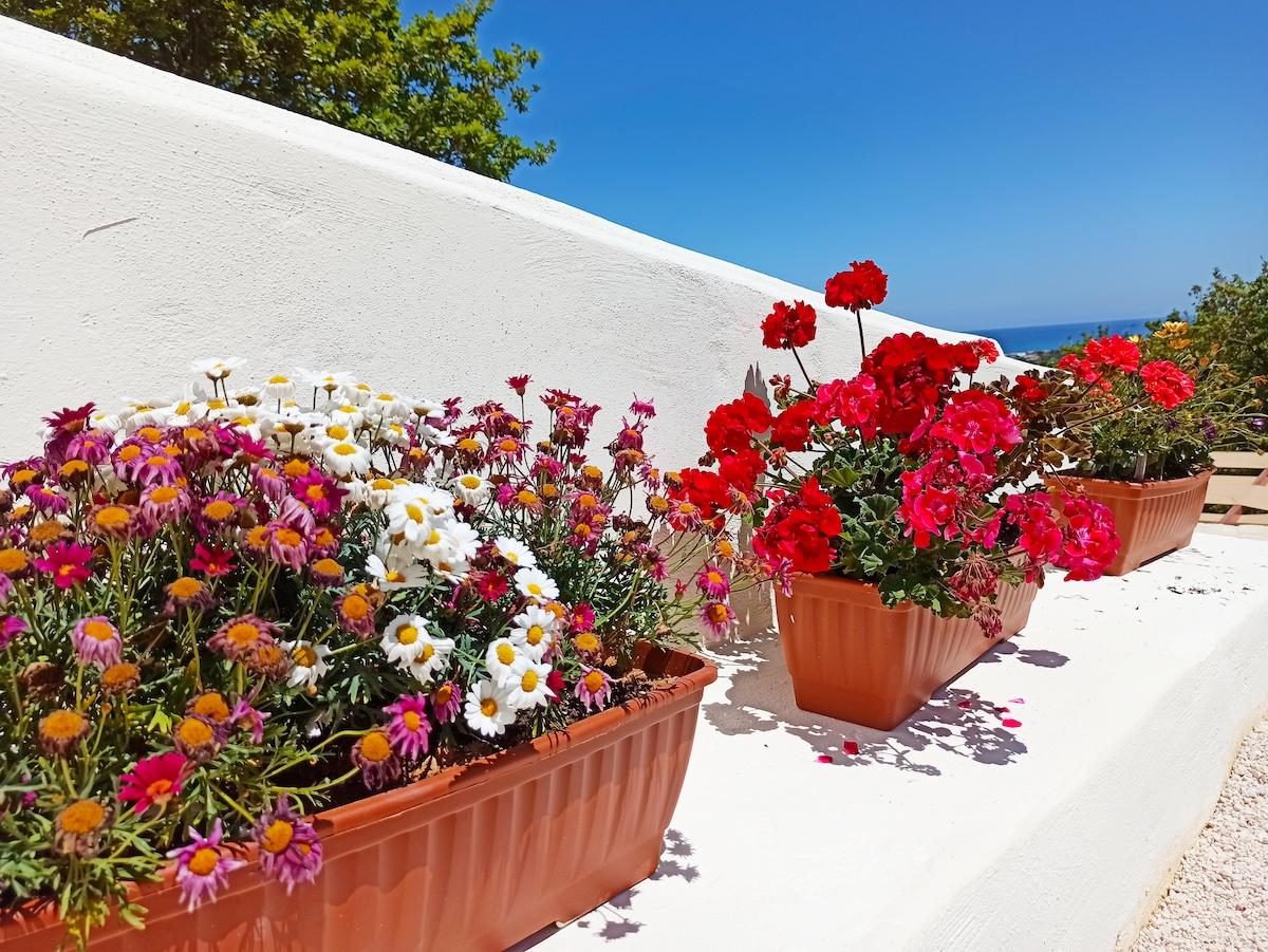 antonis-garden-villa-panorama-after-006