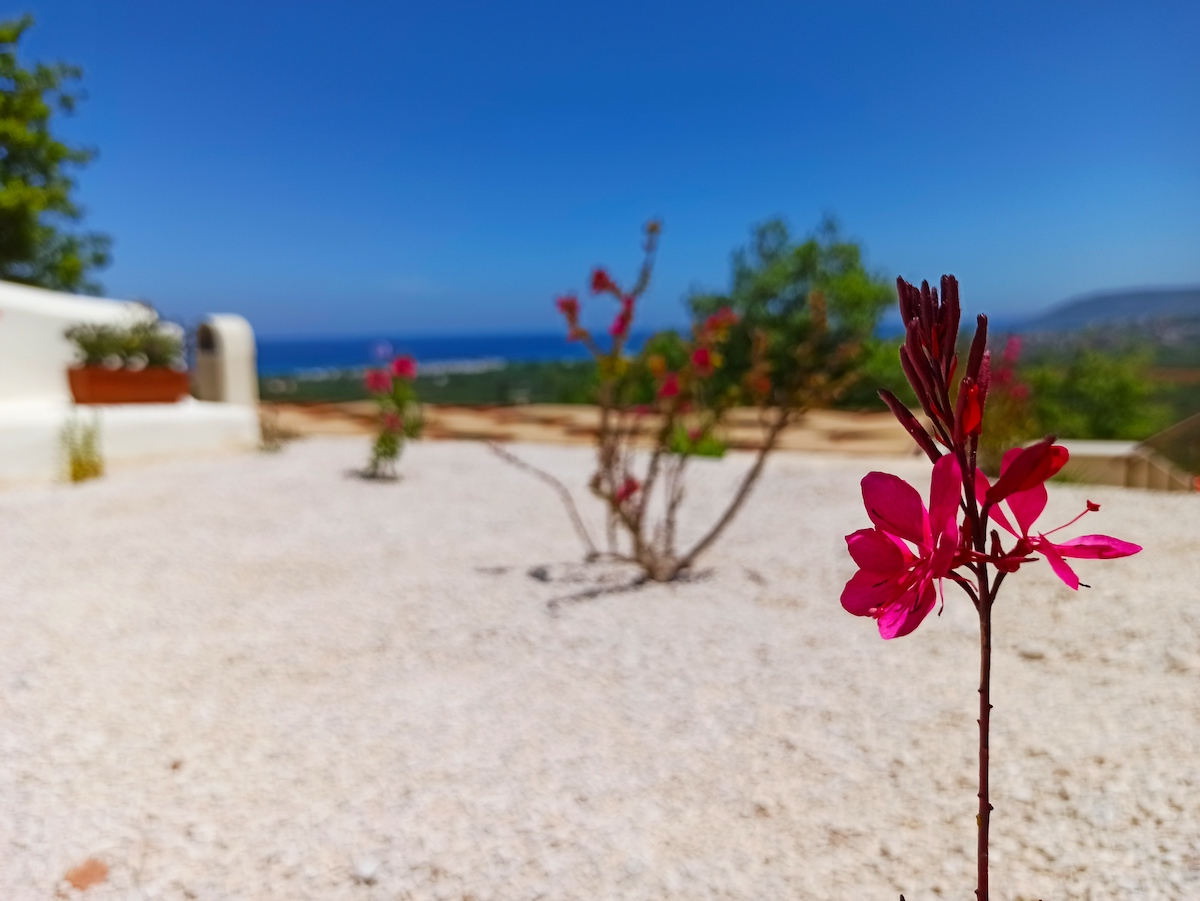 antonis-garden-villa-panorama-after-007