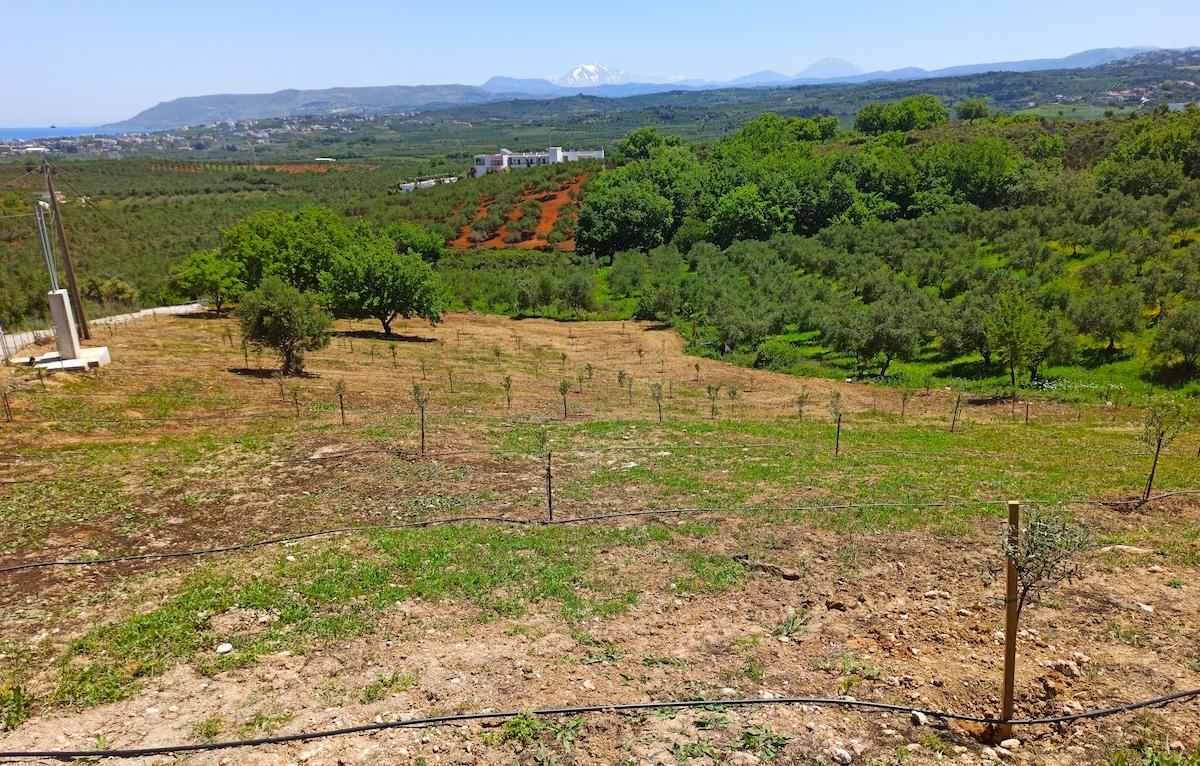antonis-garden-villa-panorama-after-013