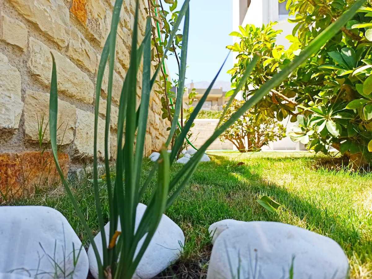 antonis-garden-minoas-luxury-villas-after-00019