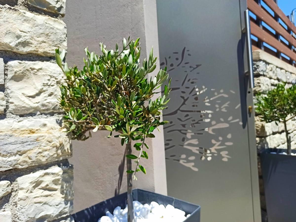 antonis-garden-minoas-luxury-villas-after-00023