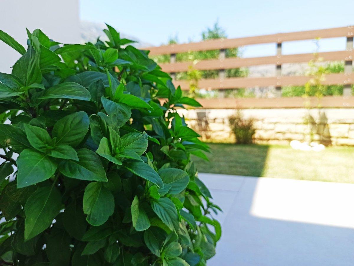 antonis-garden-minoas-luxury-villas-after-00033