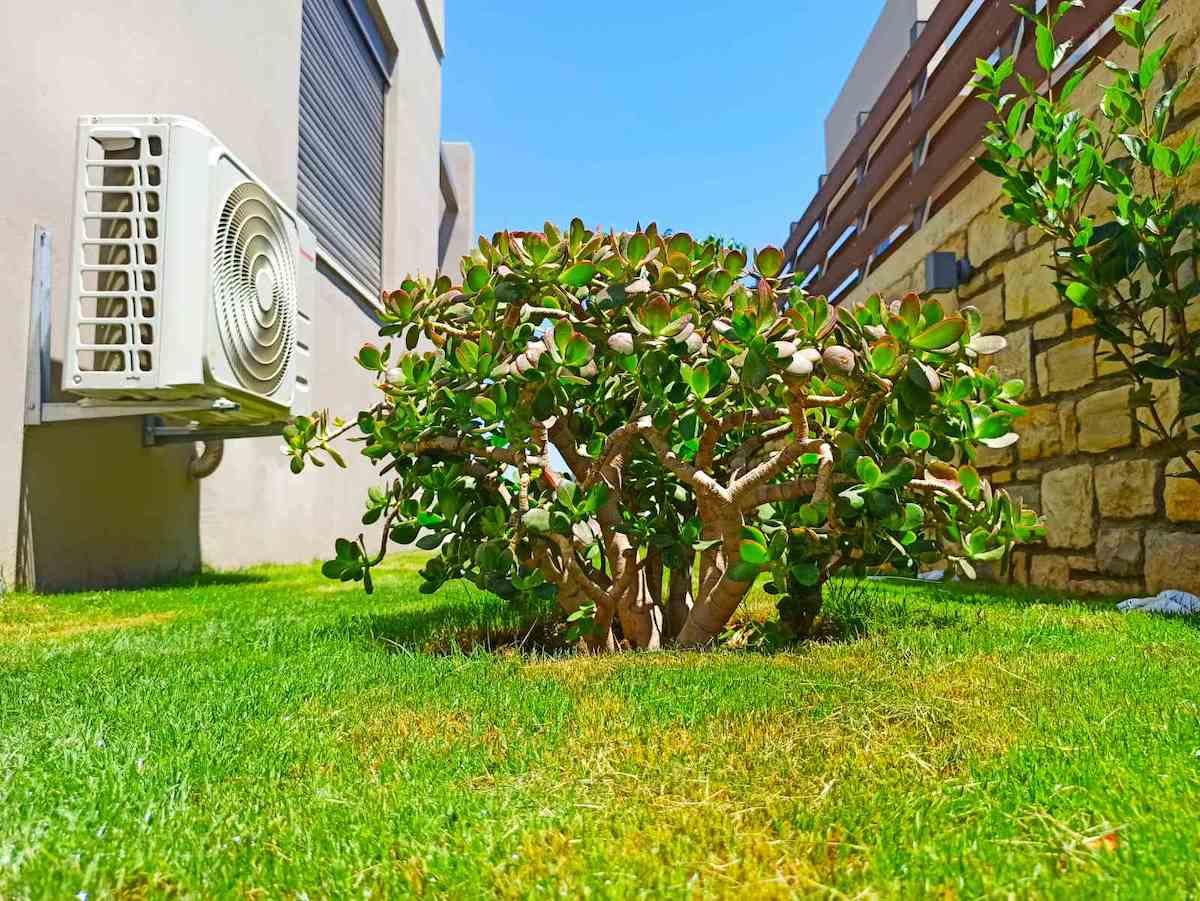 antonis-garden-minoas-luxury-villas-after-00035